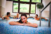 Last minute Wellness in Ungarn, Hotel Löver Wellnesswochenende